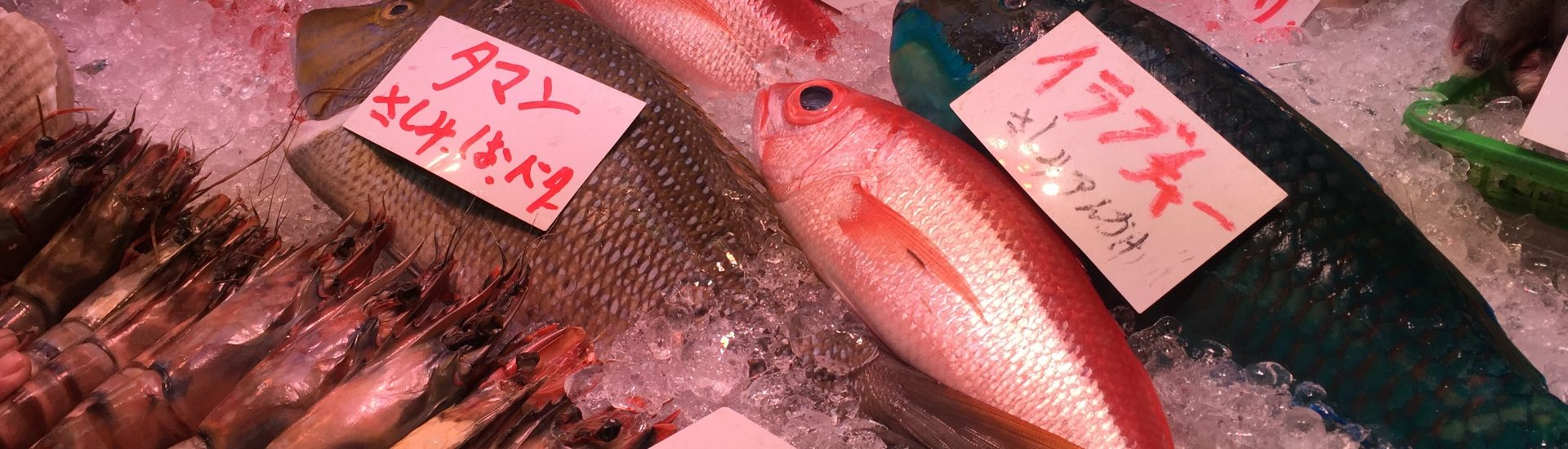 Makishi Public Market Fish