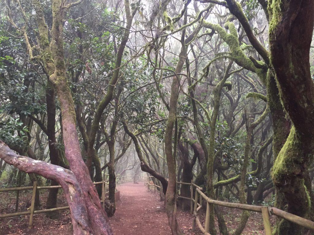 ガラホナイ国立公園